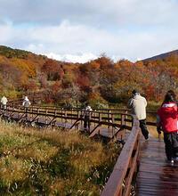 Para 3 Días Excursiones En Ushuaia